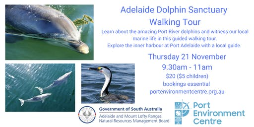 Adelaide Dolphin Sanctuary Walking Tour
