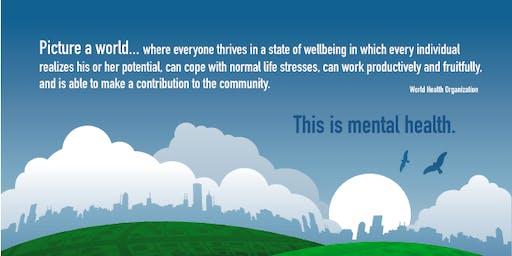 Regional Health Council Mental Health Stigma Meeting