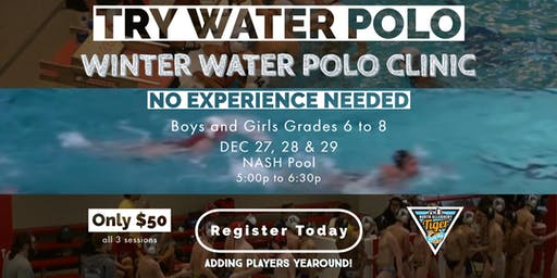 North Allegheny Tiger Water Polo - Winter Clinic - $50