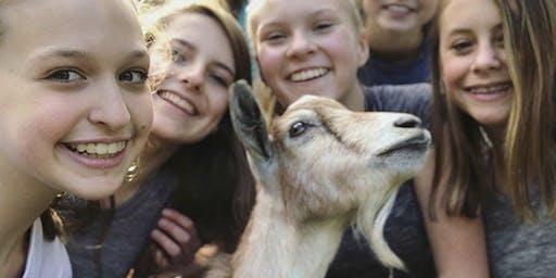 Goat Yoga 2020! Addison Circle!