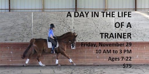 A Day in the Life of a Trainer