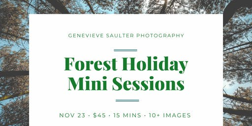 Forest Holiday Mini Sessions