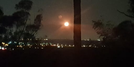 Twilight Moonrise Guided Nightwalk