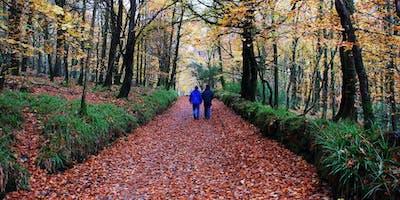 Winter Wellbeing Walks - Stockwood Open Space