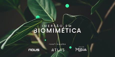 Imersão em Biomimética bilhetes