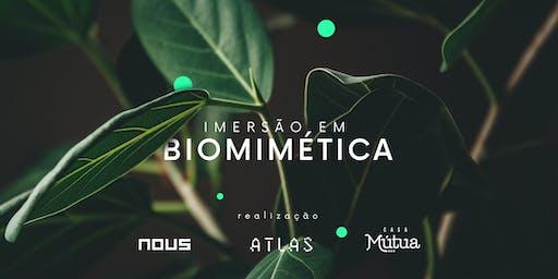 Imersão em Biomimética