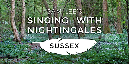 Singing With Nightingales - Sussex