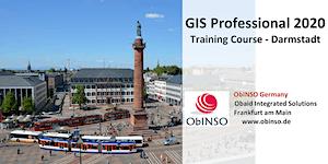 GIS Professional - Darmstadt