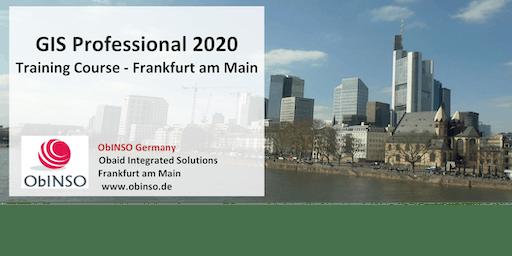 GIS Professional 2020 Training Course