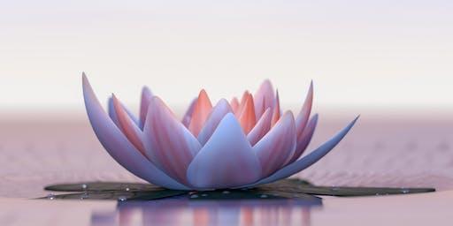 Lass uns reisen - ein Meditationsnachmittag