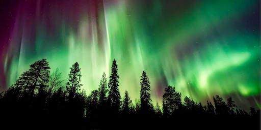 Winter Lights: Bach's Christmas Oratorio