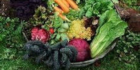 Vegetable Growing Workshop tickets