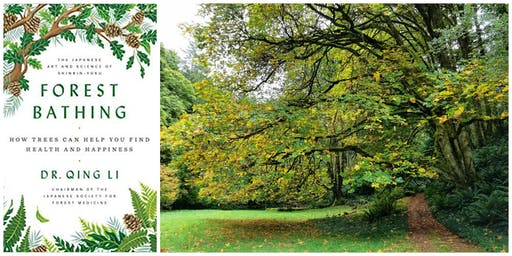 November Book Club - Autumn Forest Bathing