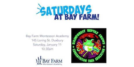 Rainforest Reptile Shows - Saturdays at Bay Farm tickets