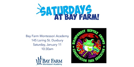 Rainforest Reptile Shows - Saturdays at Bay Farm