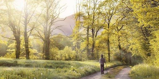 A Pilgrim's Trail