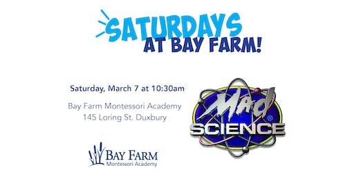 Mad Science - Saturdays at Bay Farm