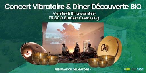 Concert & Voyage Énergétique + Diner Découverte BIO