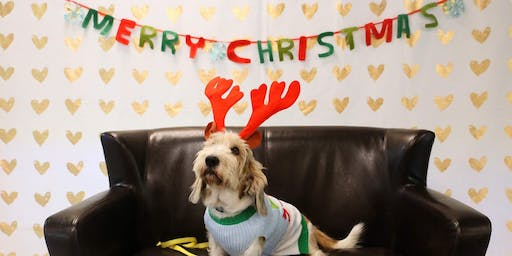 December 5th Holiday Pet Photos with Santa brought to you by Royal Canin