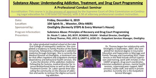 Understanding Addiction, Treatment, and Drug Court Programming