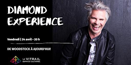 Diamond Experience | Steve Diamond