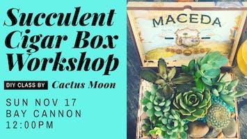 Succulent Cigar Box Workshop