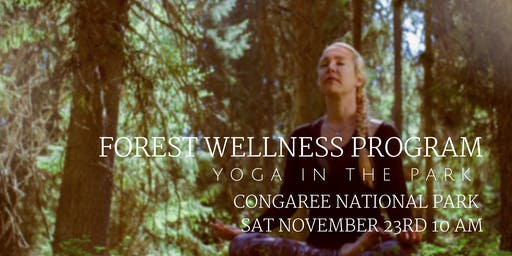 November Forest Wellness - Yoga in the Park