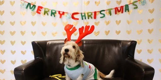 December 7th Holiday Pet Photos with Santa brought to you by Royal Canin
