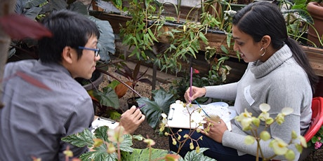 Watercolor Workshop: In the Greenhouse tickets