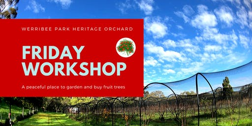 Fruit Tree Workshop and Plant Sales