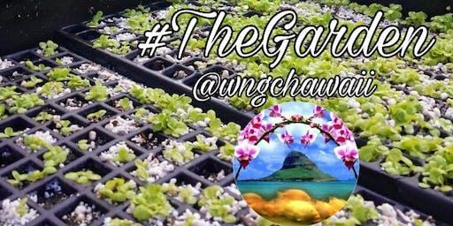 Aquaponic Garden Talk & Eco Tour