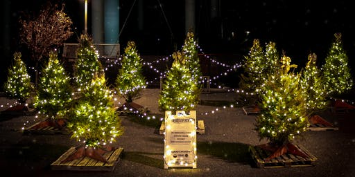 Annual Cape Assist Tree of Hope