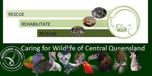 20 Years of Gladstone Wildlife