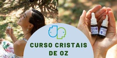 Curso Cristais de OZ