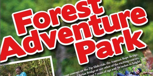 MCCS Okinawa Tours Forest Adventure