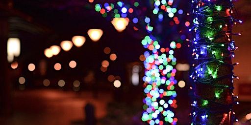 Christmas Light Show - 2019 - Sylvan Ramble Lights