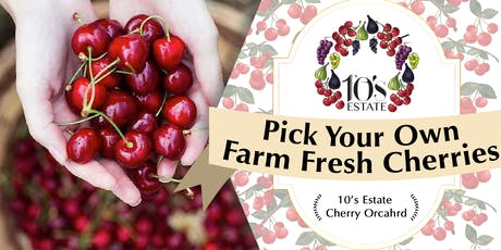 Fruit Picking (cherry) at Mudgee NSW (28 Nov - 1 Dec 2019) tickets