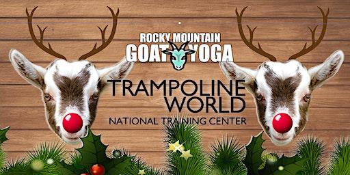 Reindeer Yoga - December 15th (Trampoline World Gymnastics)
