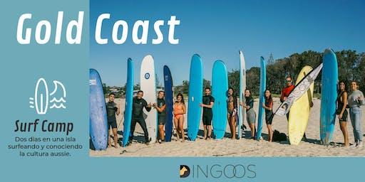Dingoos Surf Camp - Gold Coast