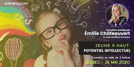 Formation : Jeune à haut potentiel intellectuel. billets
