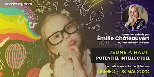 Formation : Jeune à haut potentiel intellectuel.