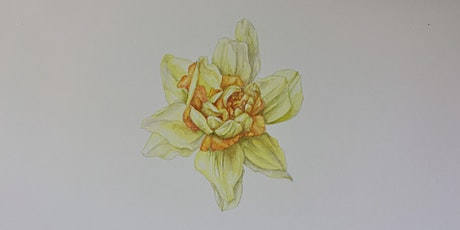 Botanical Drawing Workshop tickets
