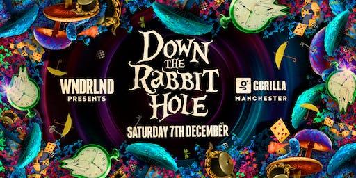 WNDRLND presents Down The Rabbit Hole with Jamie Roy