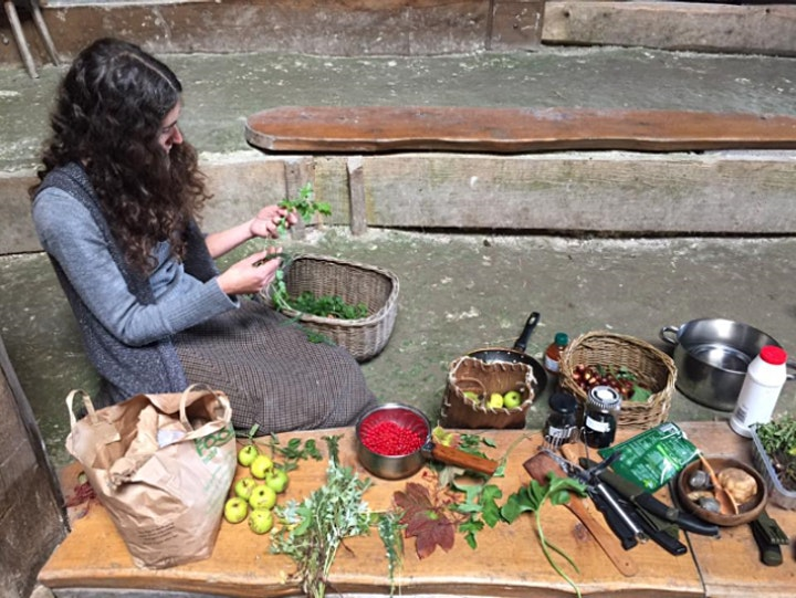 An Introduction to Foraging for Wild Food image