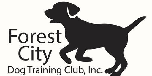 Intermediate / CGC Obedience Class