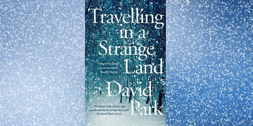 Embassy of Ireland Book Club - Travelling in a Strange Land by David Park