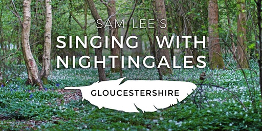Singing With Nightingales - Gloucestershire
