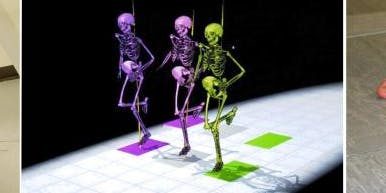 3D Motion Workshop in Gait Sports and Engineering