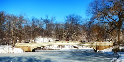 Central Park Winter Ecology Walk