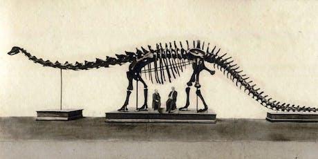 """Visitaalla mostra """"Un dinosauro americano a Bologna"""" - 3€ - Speciale Card Musei biglietti"""